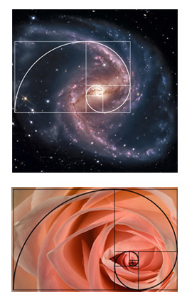 Examples of the Golden Ratio